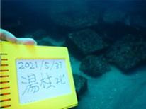 神津島現地調査